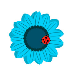 isolated blooming vector image