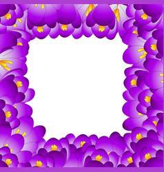 Purple crocus flower border vector