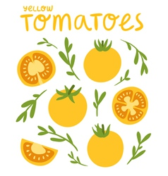 Yellow tomatoes vector