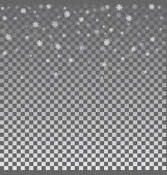 christmas winter transparent background with vector image