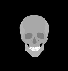 gray skull on black background vector image