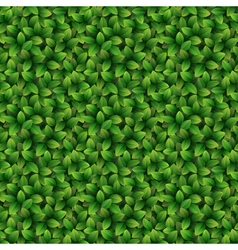 Leaves seamless texture background vector