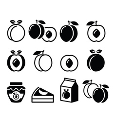 Peach apricot fruit icons set vector image vector image