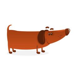 Cartoon funny weiner dog vector