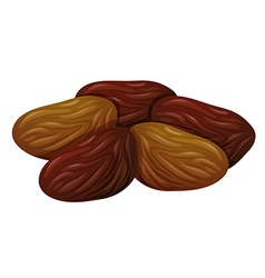 Dried fruits on white background vector image