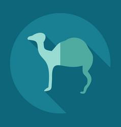 Flat concept set modern design with shadow camel vector
