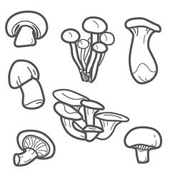 Mushroom lines vector