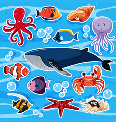 Sticker template with many sea animals vector