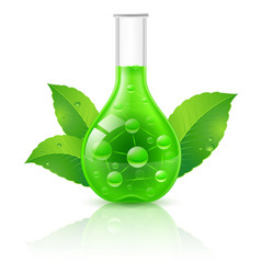 alternative medicine concept on white background vector image vector image