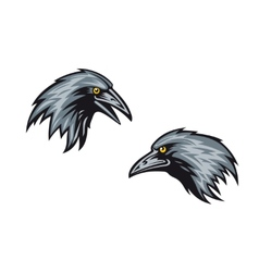Heads of two blackbirds or ravens vector image