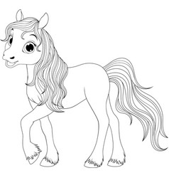 little funny foal vector image