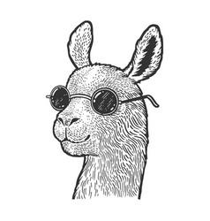 Llama in sunglasses sketch vector