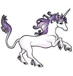 Traditional unicorn vector