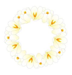 white crocus flower wreath vector image
