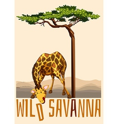Wild Savanna theme with giraffe and tree vector
