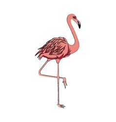 pink flamingo icon vector image vector image