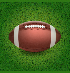 american football of the ball vector image