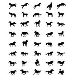 Black silhouettes horses vector
