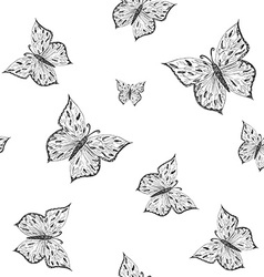 Butterfly seamless pattern Ornamental hand drawn vector image