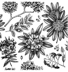 exotic plants garden seamless pattern with vector image