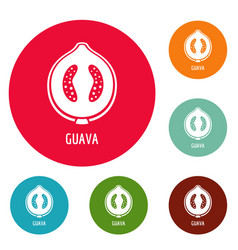 Guava icons circle set vector