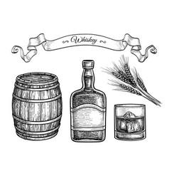Ink sketch set whiskey vector