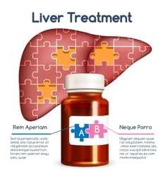 Liver treatment concept vector