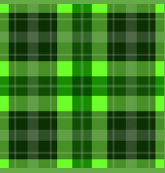 seamless green tartan - white stripes vector image