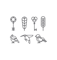 set of keys leaves and birds hummingbird vector image