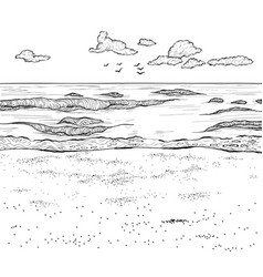 sketch of sandy beach and wavy sea vector image