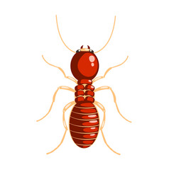 Termite insect colorful cartoon character vector