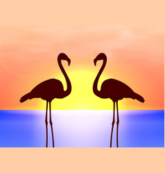 silhouette couple flamingos in the sunset vector image