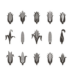 Corn icon black and white vector