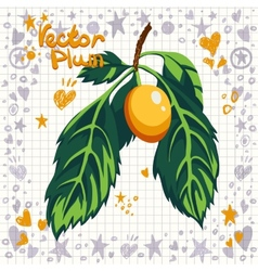 fresh yellow plum with leaves vector image
