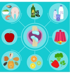 Infographics of food helpful for healthy joint vector
