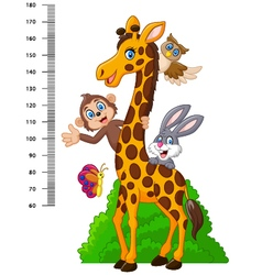 Kids height scale with funny animals vector image