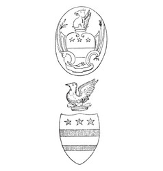 Washington arms are arms of the family vintage vector
