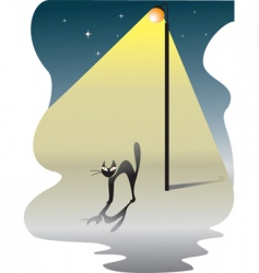 Cat in the night vector