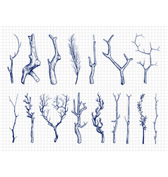 Hand drawn wood branches collection vector