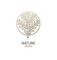 logo round tree vector image