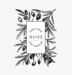 Olive branch design template hand drawn food vector