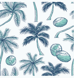 seamless pattern of palm different kinds vector image
