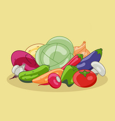 vegetarian menu made vegetables radish vector image