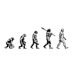 evolution of man vector image