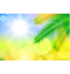 background with bright sun and palm leaves vector image
