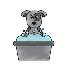 cartoon dog bathing foam clean vector image