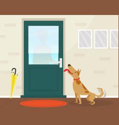 Cute happy dog meeting its owner at door flat vector