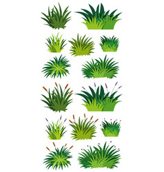 Different pattern of green grass vector