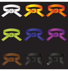 karate do martial arts color belts icons set eps10 vector image