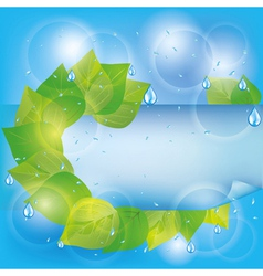 Spring eco background with green leaves vector image vector image